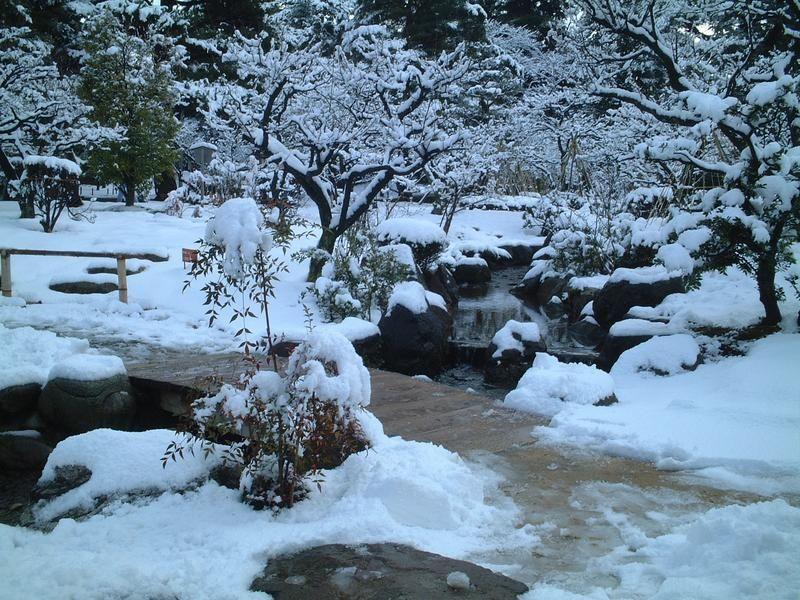 energía del invierno