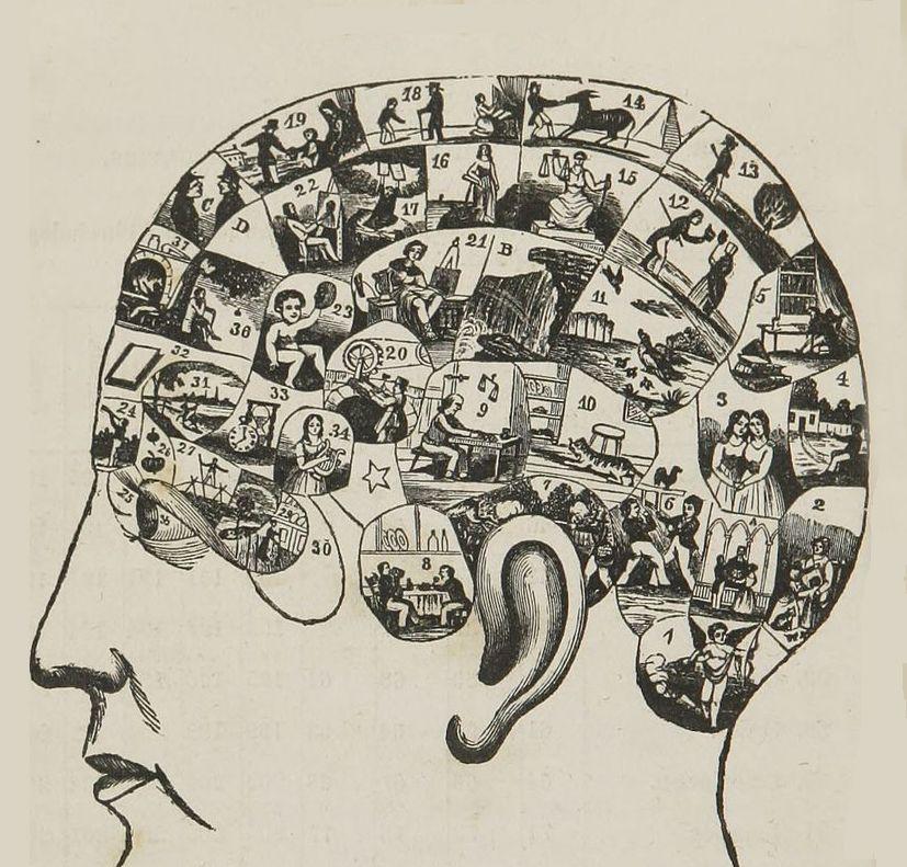 ley del mentalismo