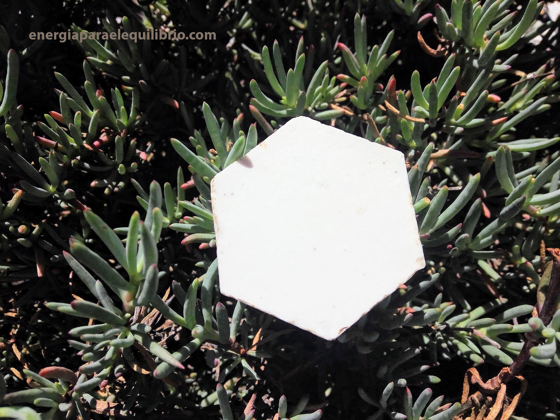simbología del hexágono